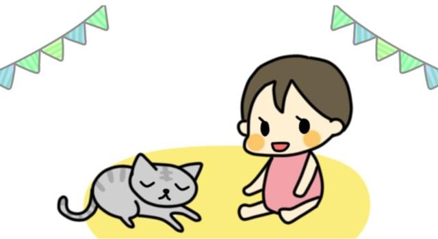 子育て 猫